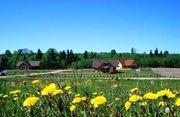 Земля в Сигулде (ижс,  внж) в коттеджном поселке Аллажи,  Латвия - foto 0